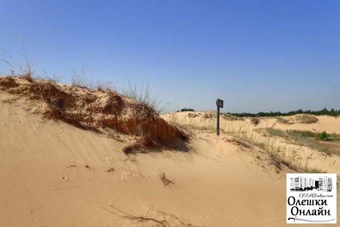 Зону безопасности расширяет национальный парк «Олешковские пески»
