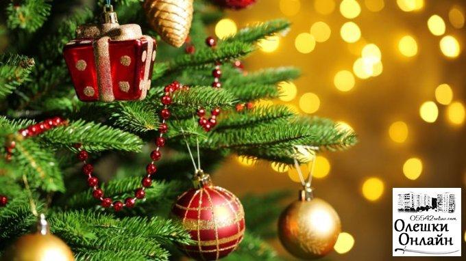 Відкриття новорічної ялинки в Олешках