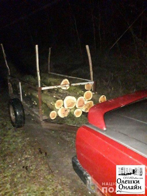 В Олешковской районе полицейские задержали лесных браконьеров, пиливших белую акацию и березу