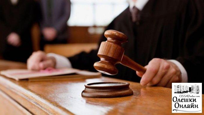 Горе-мать из Олешковского района признана вменяемой и проведет в тюрьме пять лет