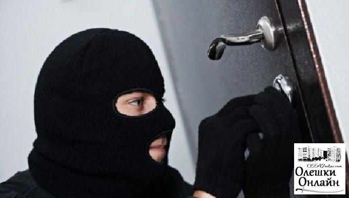 Серийного вора в Олешковском районе куртка выдала