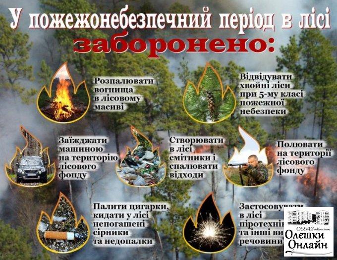 Правила пожежної безпеки в лісі