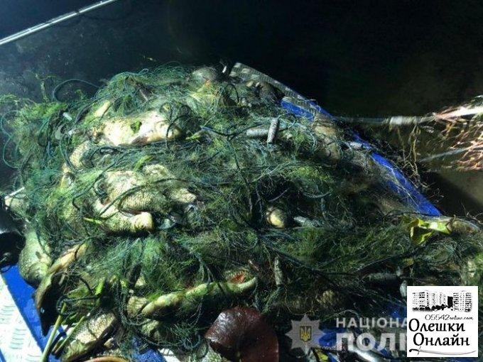 Олешковские полицейские изъяли браконьерские сети и выпустили рыбу
