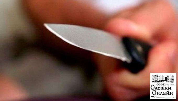 В Олешках полиция задержала женщину за нанесение ножевого ранения мужу