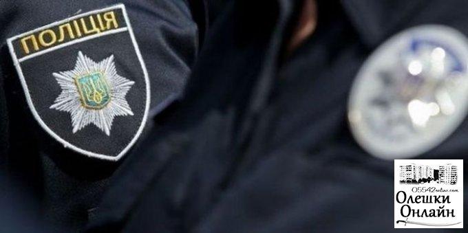 Убийство сельской учительницы в Олешковском районе