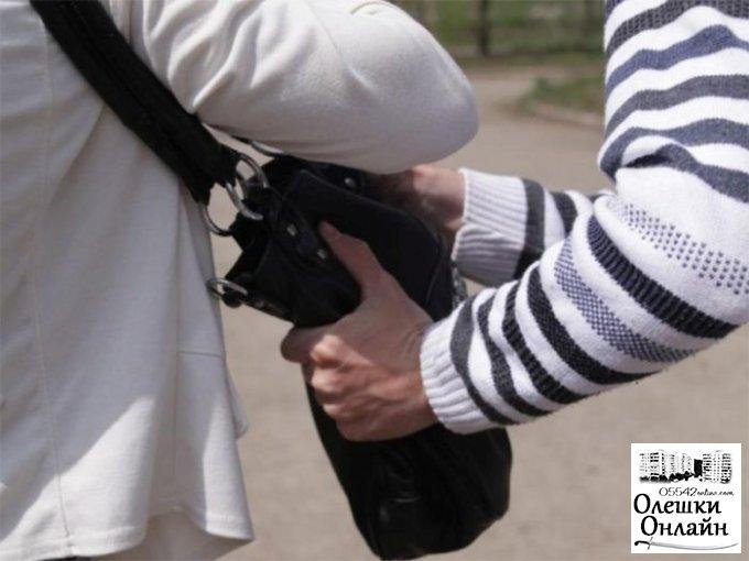 В Олешках старушку ограбили прямо на остановке