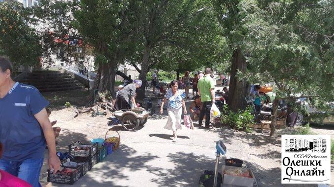 Здійснено рейд по місцях незаконної торгівлі в Олешках