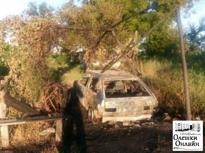 В Олешковском районе горел легковой автомобиль