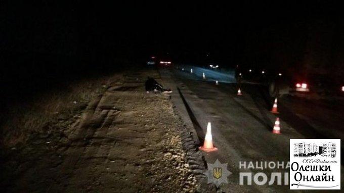 Смертельное ДТП около Олешек: в полиции сообщили о подробностях