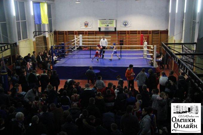 Боксерський марафон в Олешках