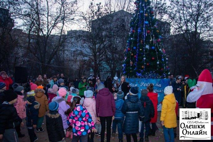Слова вдячності за новорічний настрій в Олешках