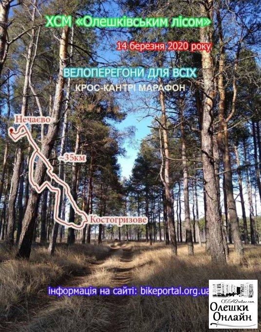 Велоперегони «Олешківським лісом»