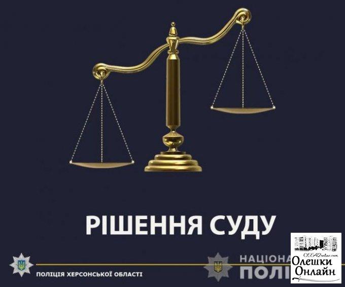 Суд освободил от отбывания наказания водителя, который тяжело травмировал 13-летнюю девочку с Олешковского района