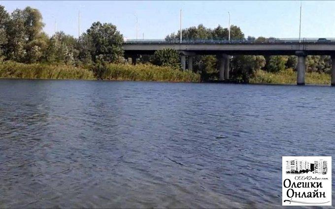На глазах бывшего мужа экс-жена спрыгнула с моста