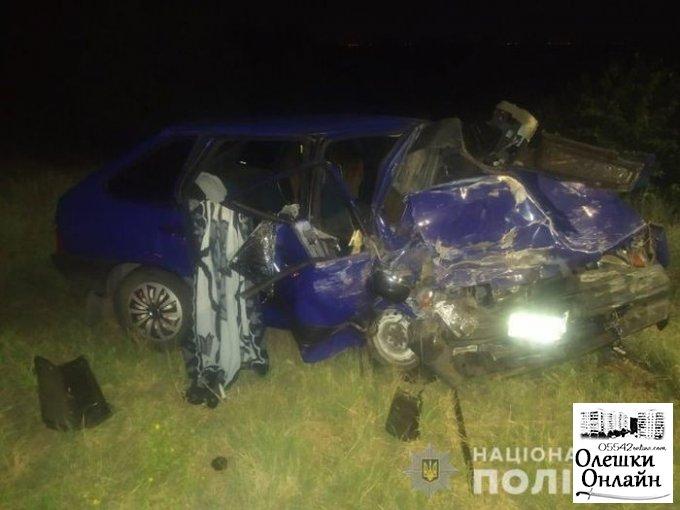 В жутком ДТП в Олешковском районе погибла пассажир авто