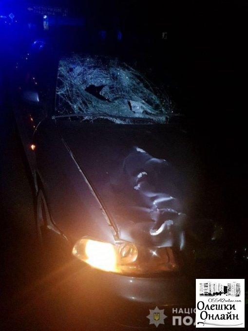 В Олешковском районе полиция выясняет обстоятельства гибели пешехода