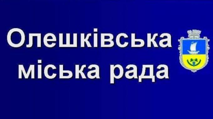 Кто будет старостами в селах, секретарем рады и замами головы в Олешковской ОТГ