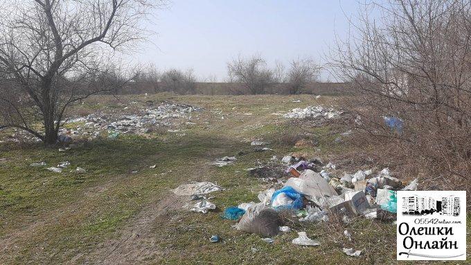 Зона экологического бедствия - территория между Олешками и Солонцами (видео)