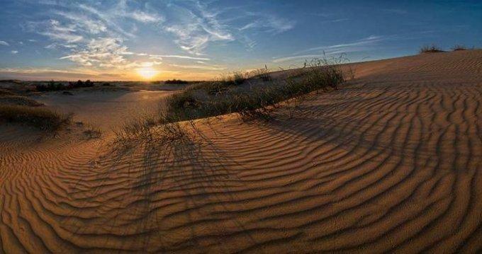 В Олешківських пісках зніматимуть фільм