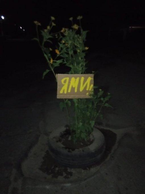 В Олешках садят клумбы в ямах на дорогах (фотофакт)