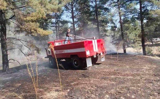 Біля Раденська оперативно згасили лісову пожежу